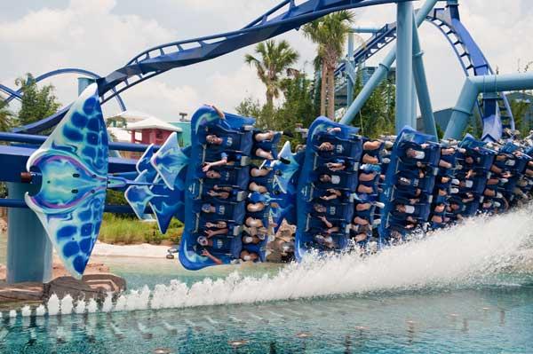 Seaworld Visitors Support The Orlando Magic Disney News