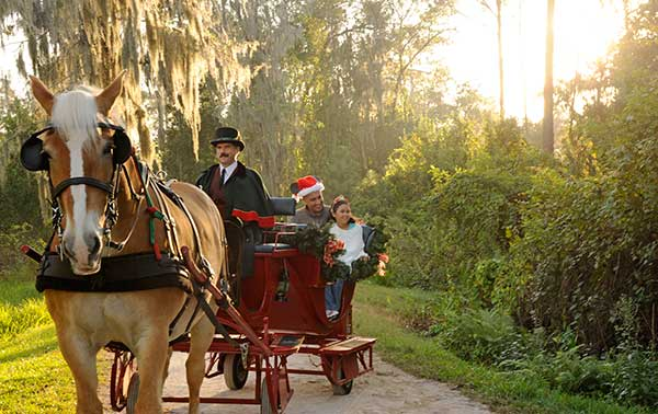 Holiday Sleigh Rides Disney's Fort Wilderness Resort and Campground