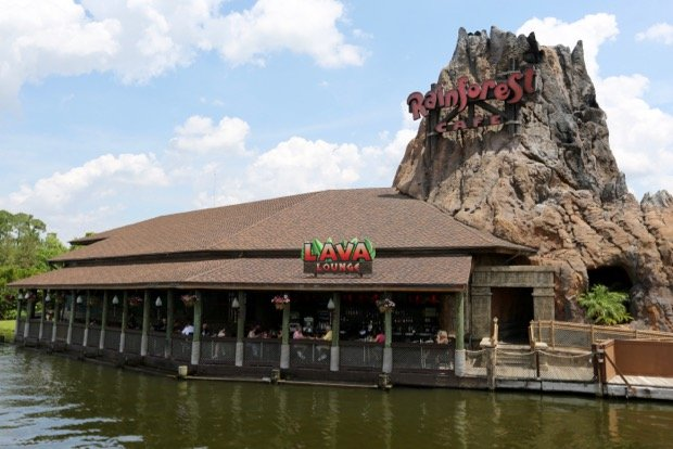 Rainforest Cafe At Disney Springs Marketplace
