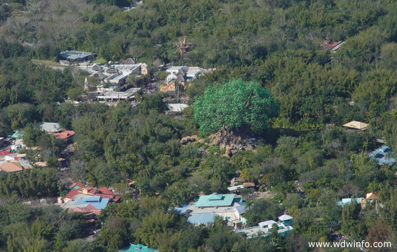 Aerial views disney animal kingdom 01