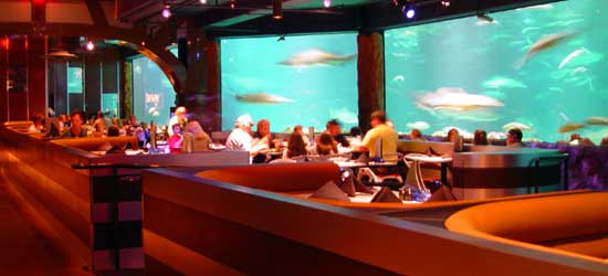 Sea World Orlando Restaurants And Dining