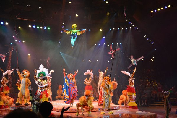 Festival Of The Lion King At The Animal Kingdom Lion King