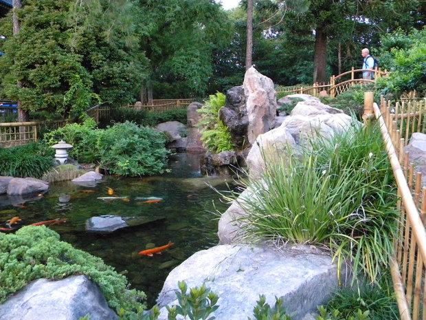 Koi pond at Japan Pavilion