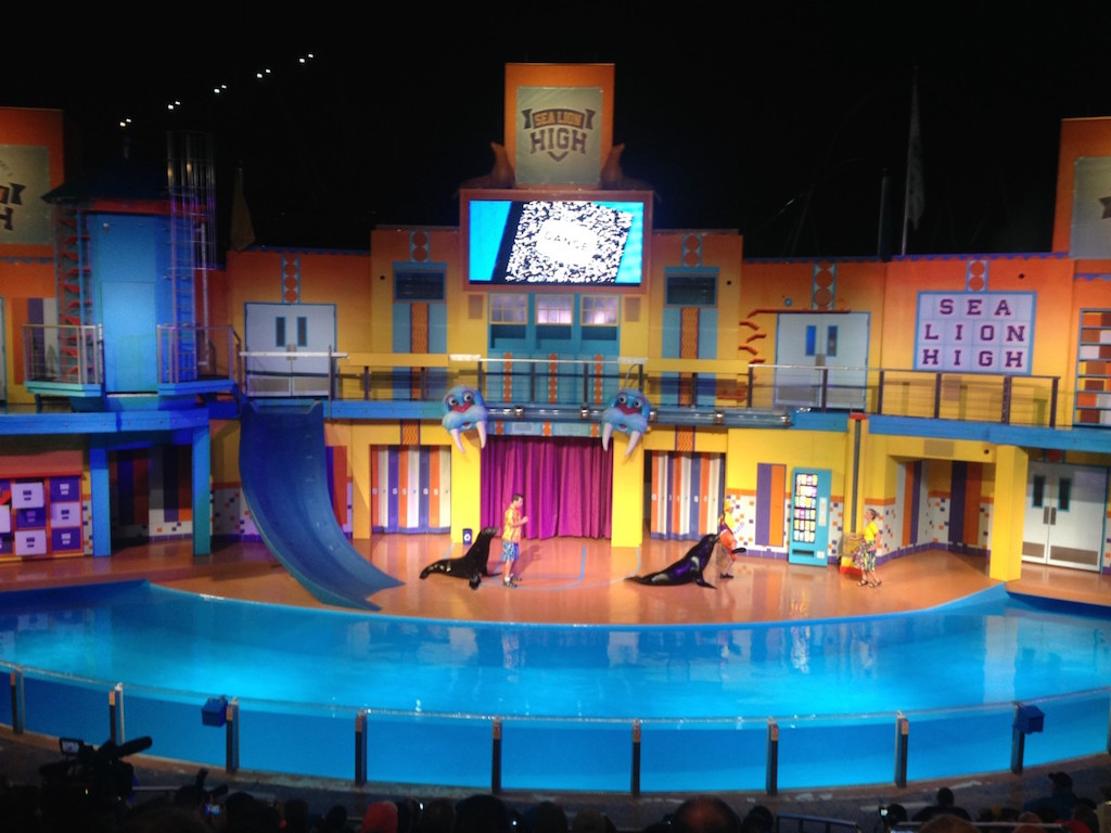 Clyde Amp Seamore Sea Lion Show Reopening At Seaworld Orlando