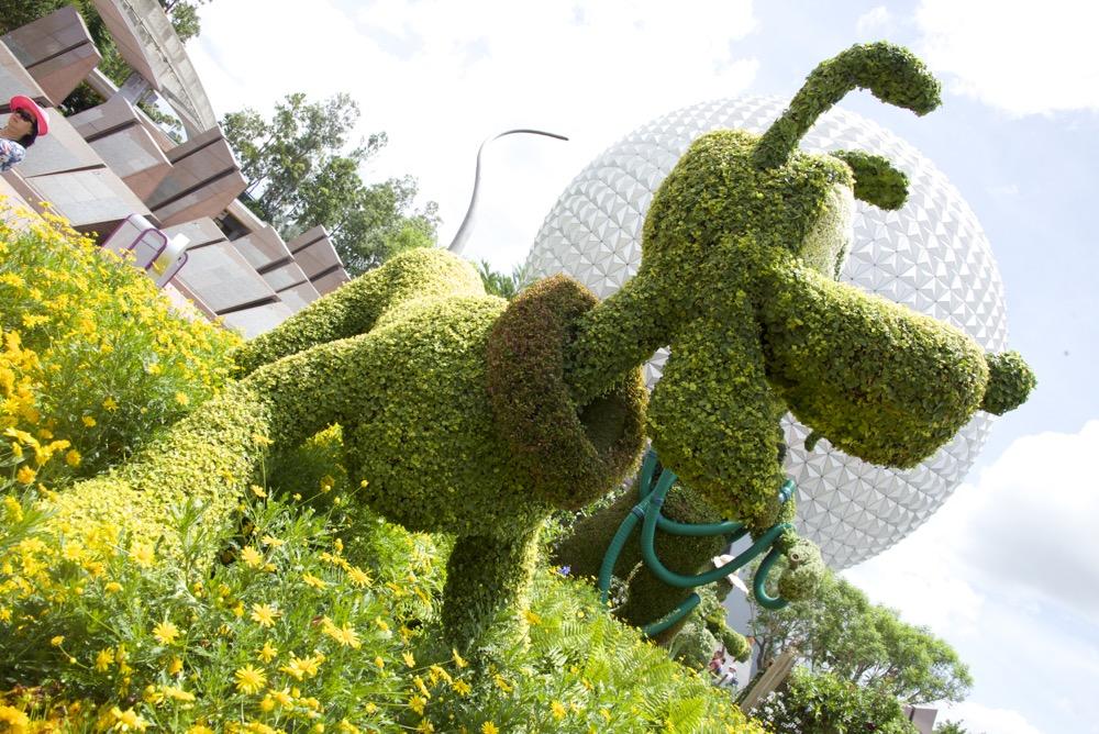 2015 Flower & Garden Festivals