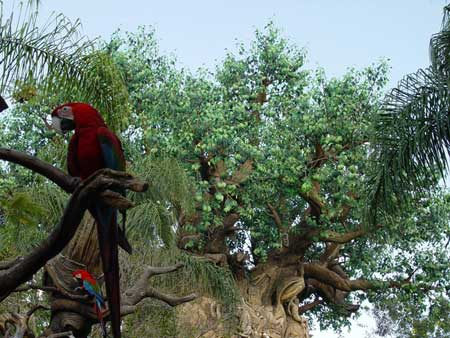 tree-of-life-450