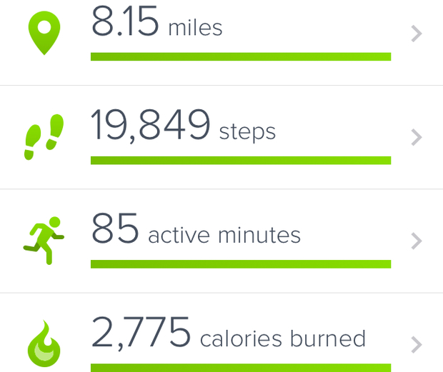 Walking a lot... don't believe me? Ask the Fitbit!