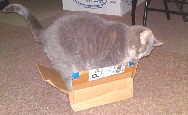 If I fits, I ships?