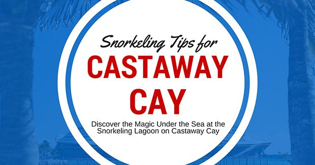 Tips for Snorkeling at Castaway Cay