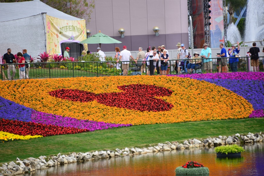 2016 Flower & Garden Festivals
