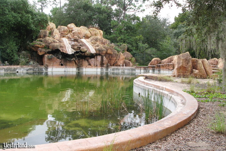 Pool At Disneys Abandoned River Country Water Park Being Drained
