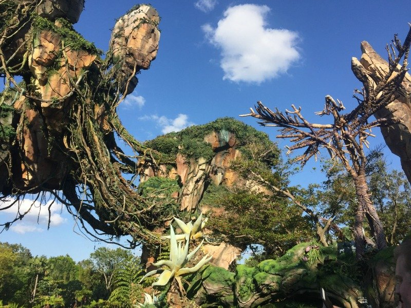 AVATAR Flight of Passage