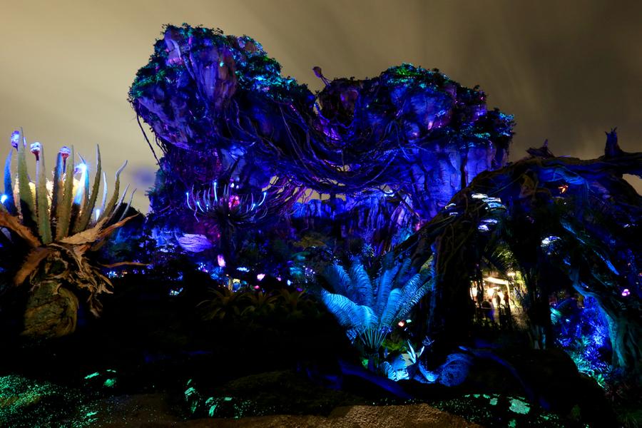 Pandora-Night-013