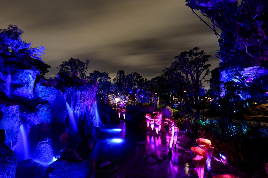 Nighttime Photos Of Pandora The World Of Avatar