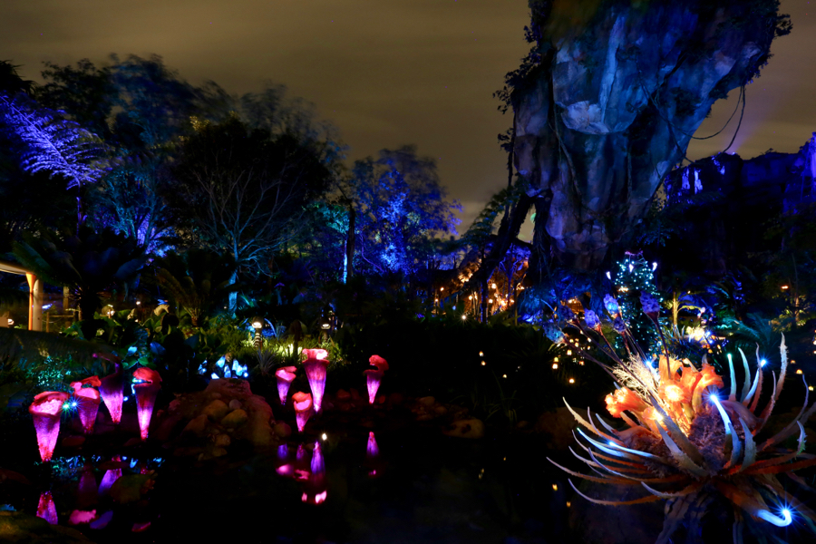 Nighttime Photos Of Pandora The World Of Avatar