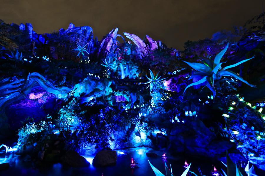 Pandora-Night-021