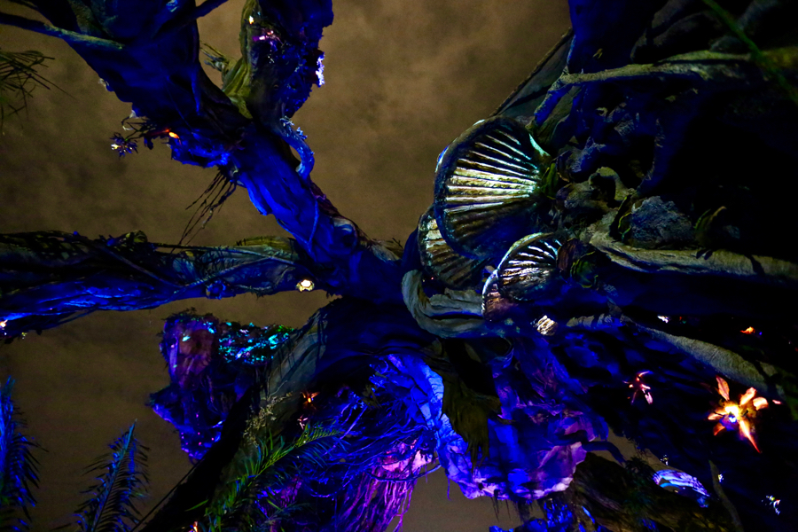 Pandora-Night-024