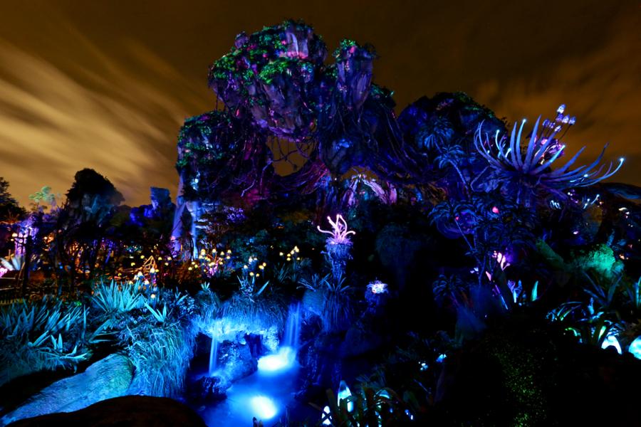 Nighttime Photos Of Pandora The World Avatar