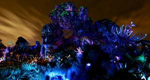Nighttime Photos of Pandora - The World of Avatar