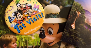 Helping You Plan Your WDW Vacation Using a Disney Planning Template