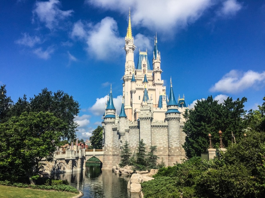 Are Disney Veterans Overwhelming First-Timers?