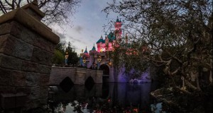 Registrar Certifies Signatures on Petition Forcing Disneyland to Pay a 'Living Wage'