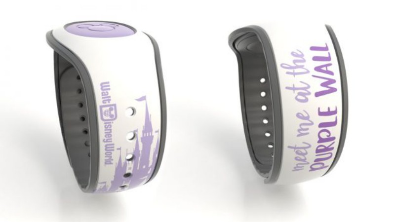 MagicBands0318A