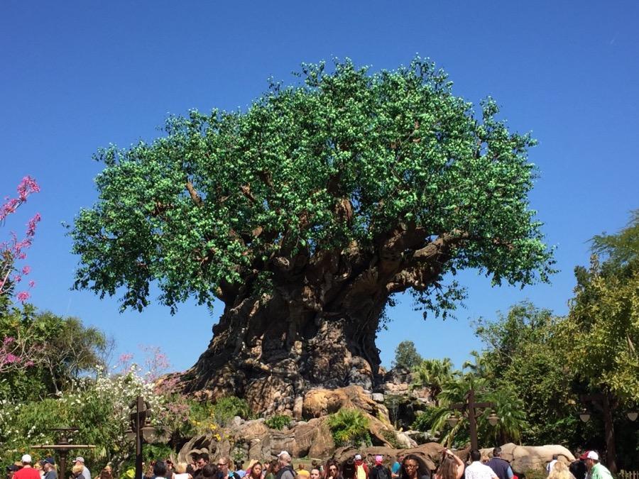 tree-of-life - 1