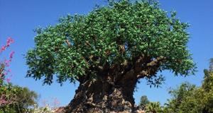 Celebrate Disney's Animal Kingdom Anniversary April 22 until May 5