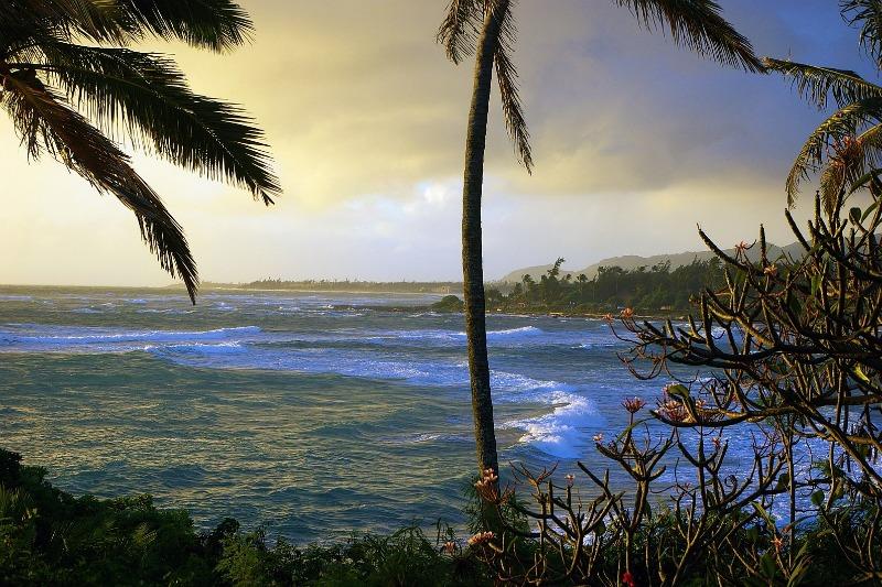 Kauai Wiki