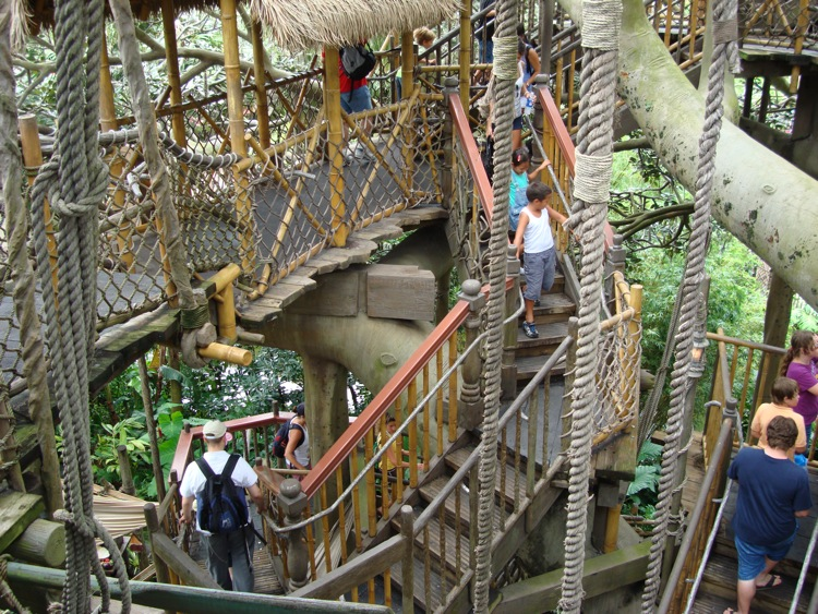 Swiss-Family-Treehouse-5