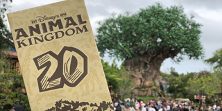 Highlights of the 20th Anniversary of Disney's Animal Kingdom