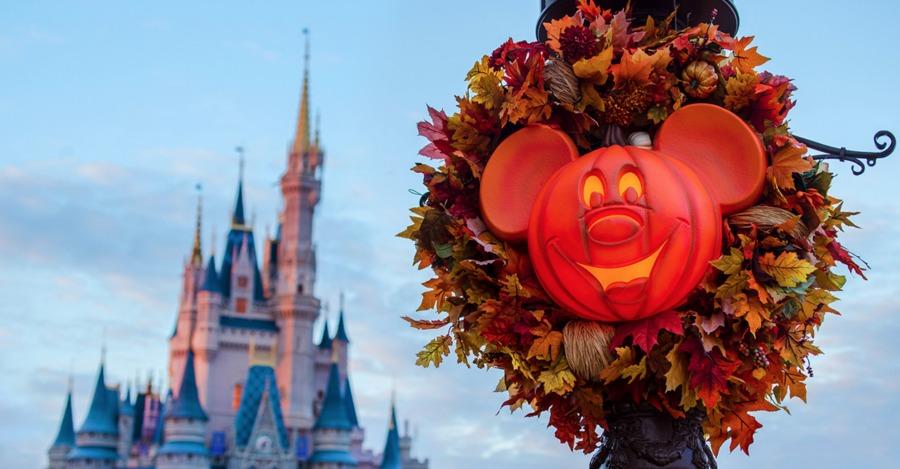 MNSSHP Pumpkin Close-Up
