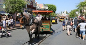 Main Street Memories: A Mouseketeer's Reminiscences of Walt and Disneyland