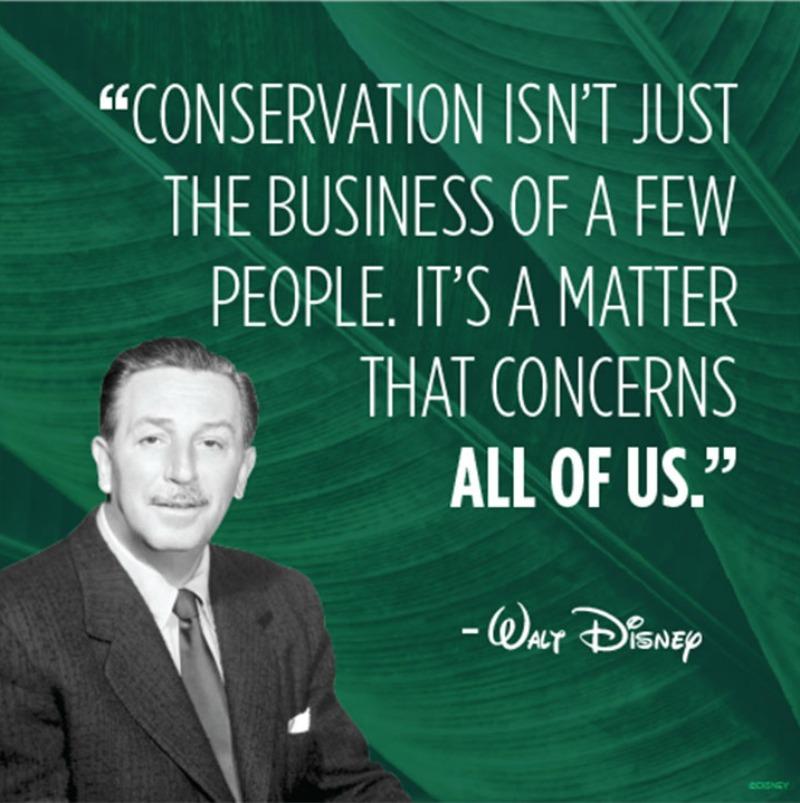 conservationFI