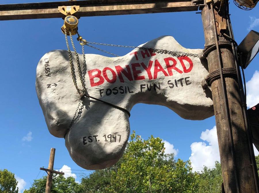 The Boneyard Playground at Disney's Animal Kingdom Theme Park