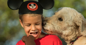 Disney's Dog-Friendly Resort Pilot Program Continues at Select Walt Disney World Hotels