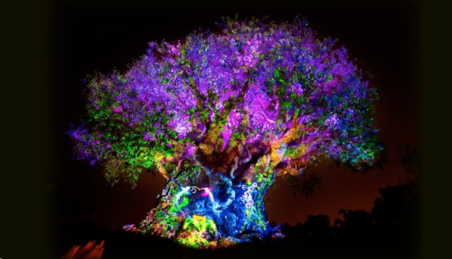 animal-kingdom-tree-of-life-awakenings