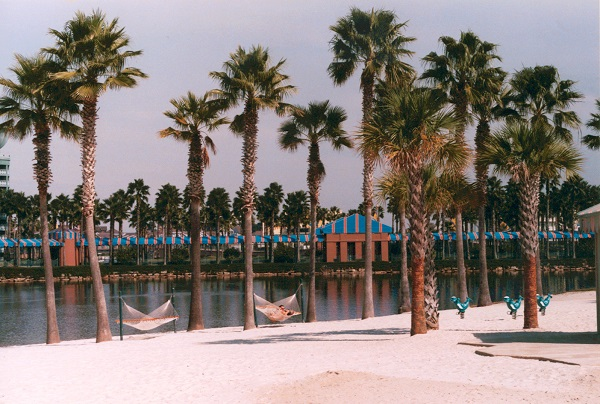 Disney's Swan & Dolphin 27