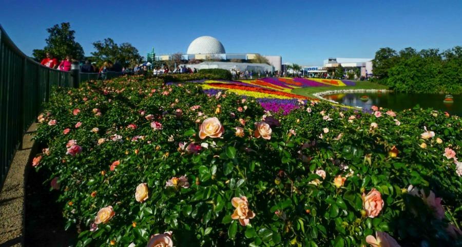 Epcot-Flower-Garden-Festival-011-cropped