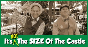 It's Not the Size of the Castle: The Shared Disney Experience