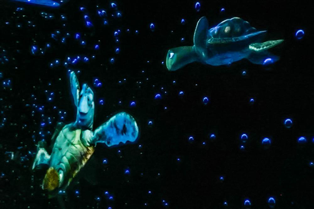 Nemo-2