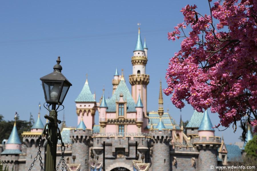 Sleeping-Beauty-Castle-002-2