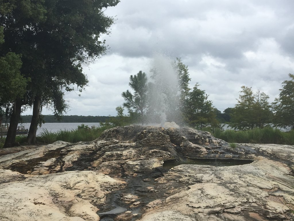 Wilderness Lodge's geyser erupts throughout the day, don't miss it! Photo: Lisa Rufle