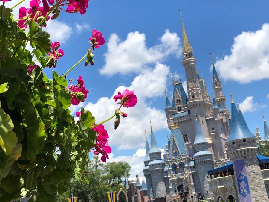 Cinderella-Castle - 11