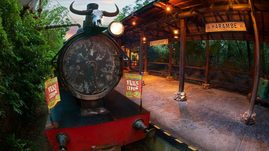 harambe-at-night-train