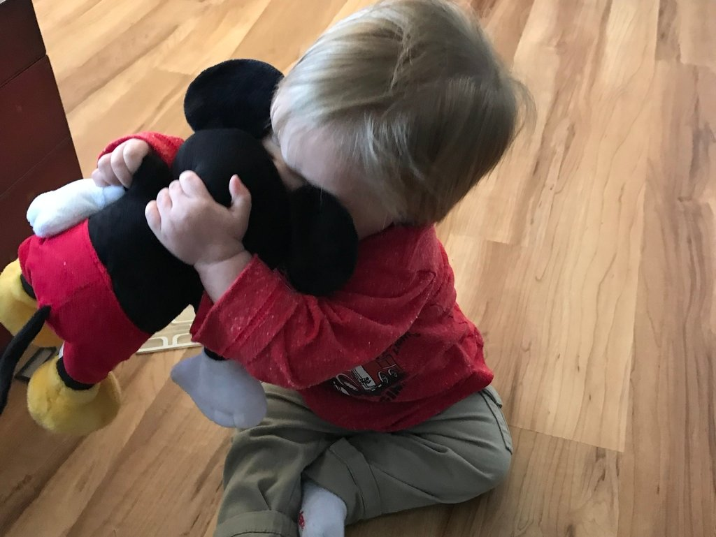Hugging Gickey Resized