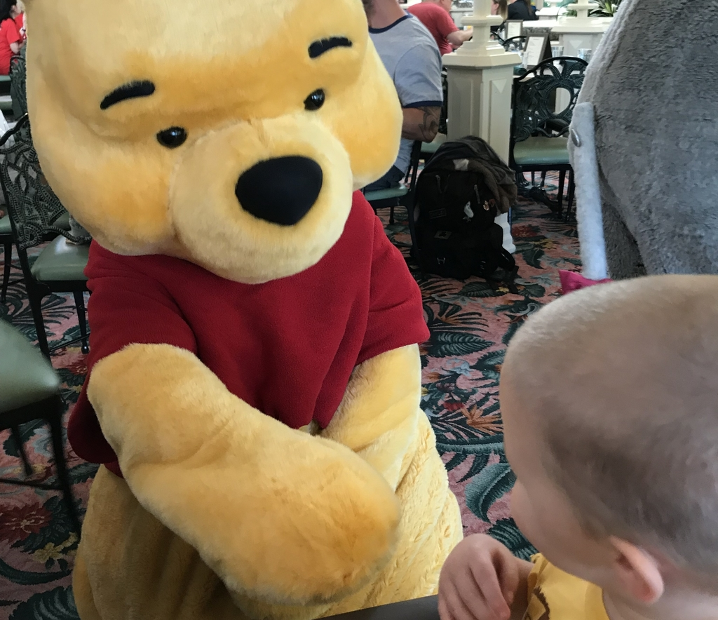 Meeting Pooh Resized