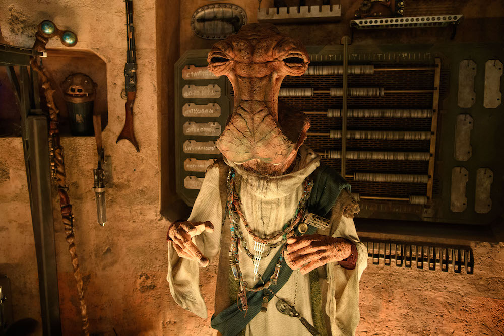 Guests visiting Dok-Ondar's Den of Antiquities in Star Wars: Galaxy's Edge at Disneyland Park in Anaheim, California, and at Disney's Hollywood Studios in Lake Buena Vista, Florida, will discover rare items from across the galaxy for sale, all part of Dok-Ondar's collection. Items represent different eras of the Star Wars saga, including holocrons, ancient Jedi and Sith artifacts, lightsabers and more. (Richard Harbaugh/Disney Parks)