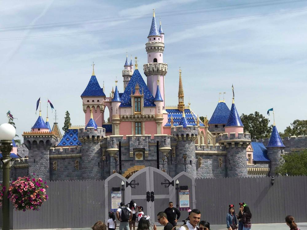 sleeping-beauty-castle-walls